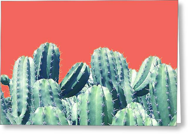 Cactus On Coral Greeting Card by Uma Gokhale