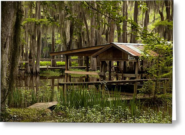 Caddo Lake Reflection Greeting Card