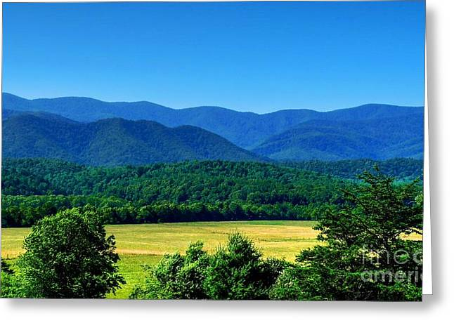 Cades Cove In The Great Smoky Mountains Greeting Card