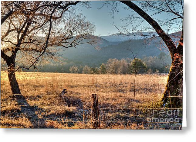 Greeting Card featuring the photograph Cades Cove, Spring 2017 by Douglas Stucky