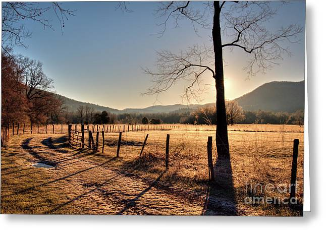 Greeting Card featuring the photograph Cades Cove, Spring 2017,i by Douglas Stucky