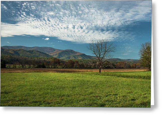 Cades Cove Tennessee Greeting Card by Lena Auxier