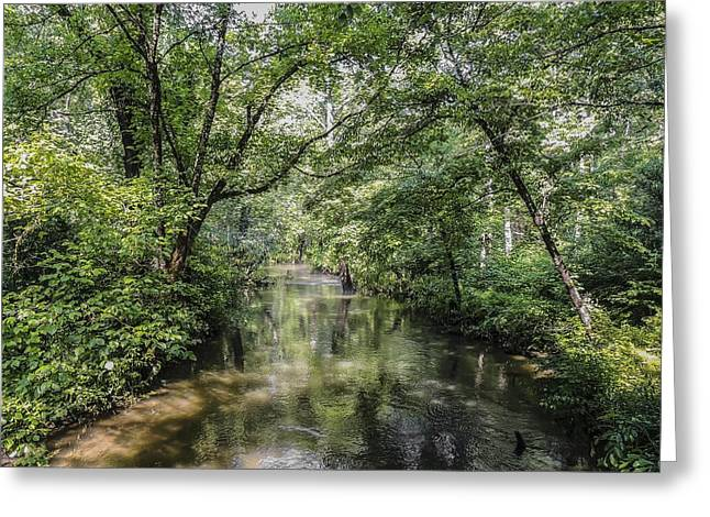 Cades Creek Greeting Card