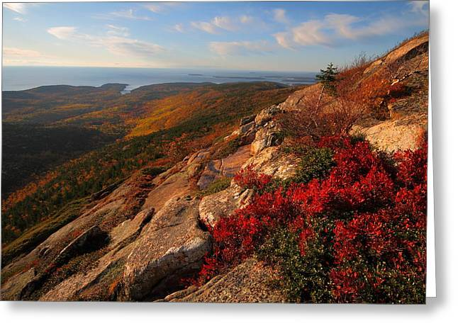 Cadillac Mountain Sunrise At Acadia National Park Greeting Card