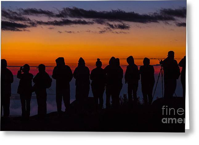 Cadillac Mountain Sunset.  Greeting Card