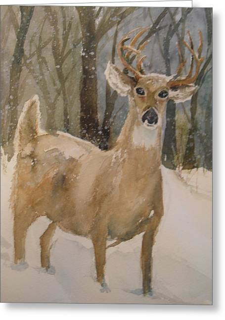 Greeting Card featuring the painting Caedmon's Buck by Sandra Strohschein