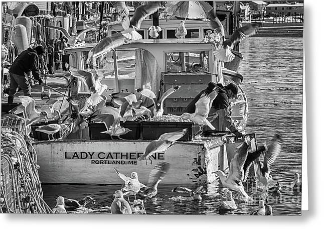 Cafe Lady Catherine Black And White Greeting Card