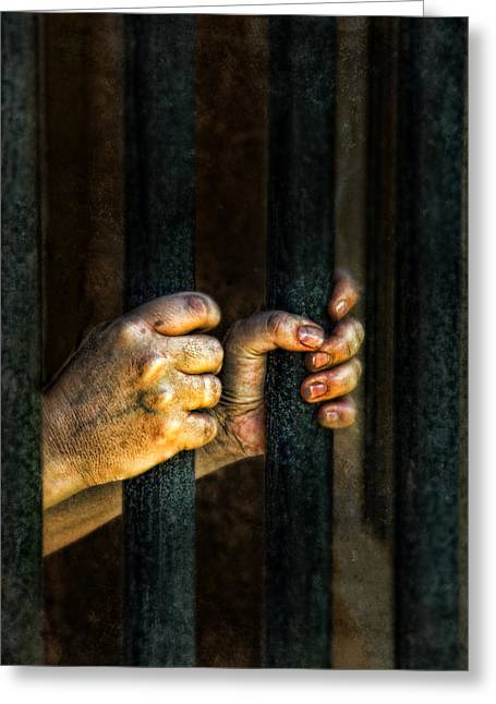 Miserable Greeting Cards - Caged 2 Greeting Card by Jill Battaglia