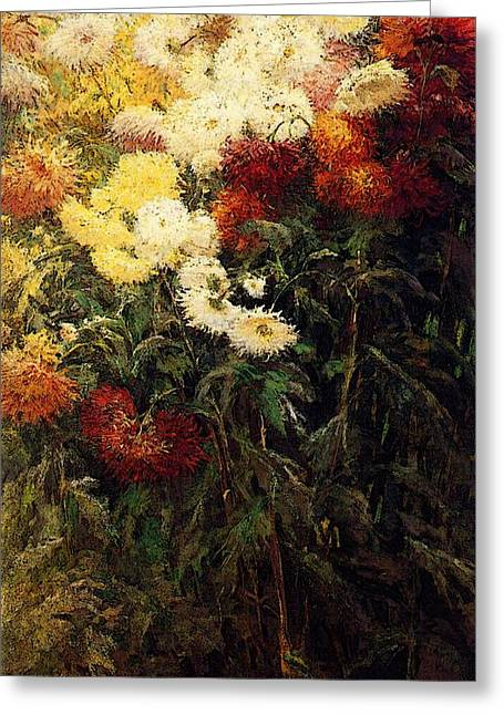 Caillebotte Gustave Chrysanthemums Garden At Petit Gennevilliers Greeting Card