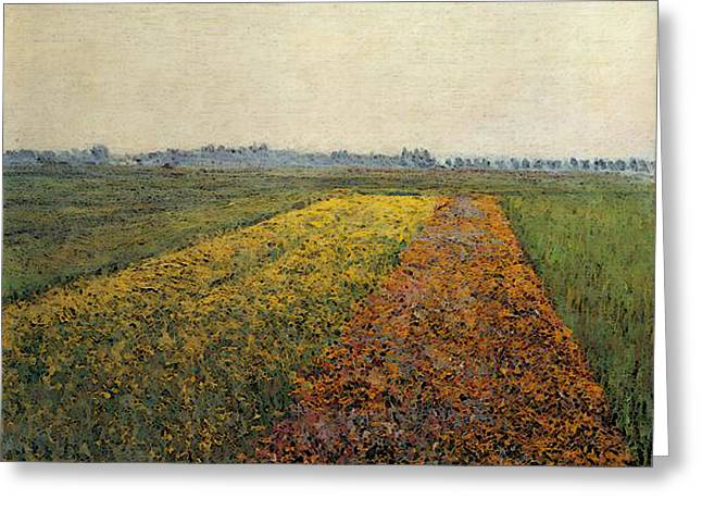 Caillebotte Gustave The Yellow Fields At Gennevilliers Greeting Card