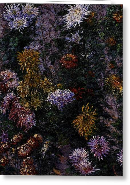 Caillebotte Gustave White And Yellow Chrysanthemums Garden At Petit Gennevilliers Greeting Card