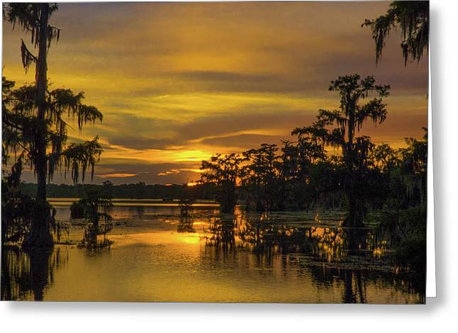 Cajun Gold Greeting Card