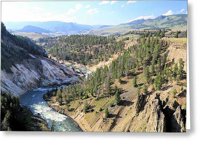 Calcite Springs Along The Bank Of The Yellowstone River Greeting Card