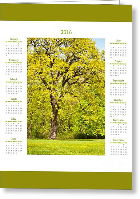Calendar 2016 Spring Oak Tree Greeting Card by Arletta Cwalina