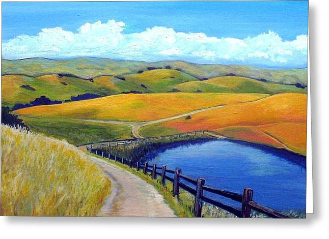 Calero Pond Greeting Card by Stephanie  Maclean