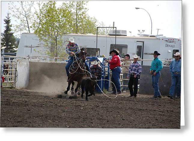 Calf Roping Greeting Card by Marj Beach