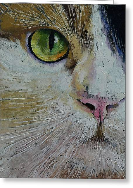 Calico Cat Greeting Card by Michael Creese