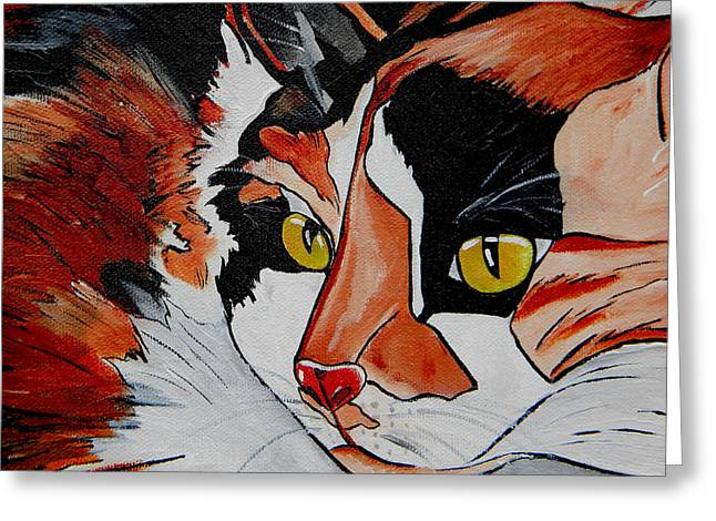 Calico Close Up Of Face Greeting Card