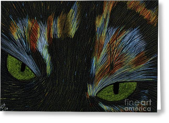 Calico Eyes Drawing Greeting Card