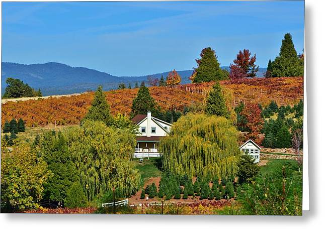 California Apple Hill Greeting Card