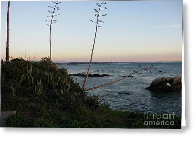 California At Twilight Greeting Card
