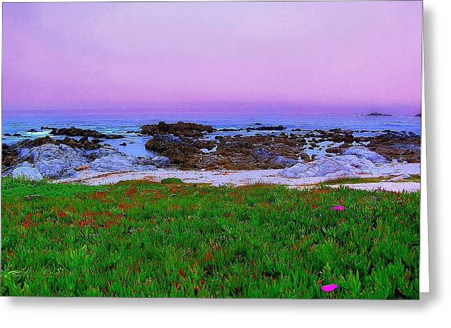 California Coast Greeting Card by Jen White