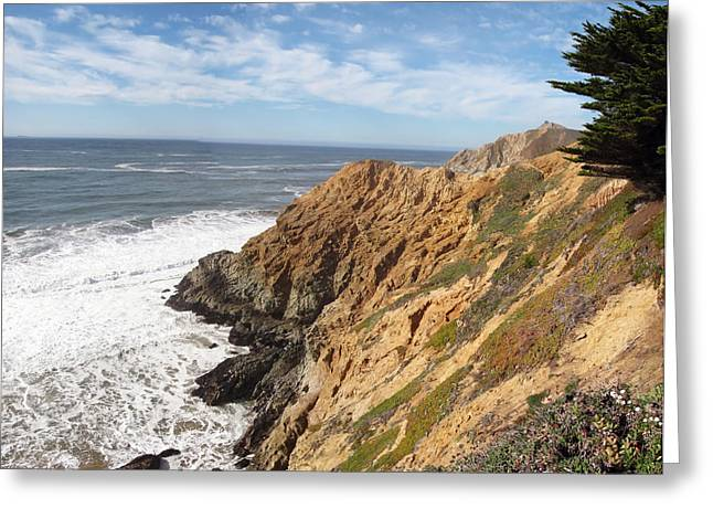 California Coast Greeting Card by Mary Lane