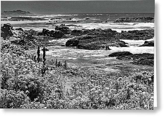 California Coast No. 9-2 Greeting Card