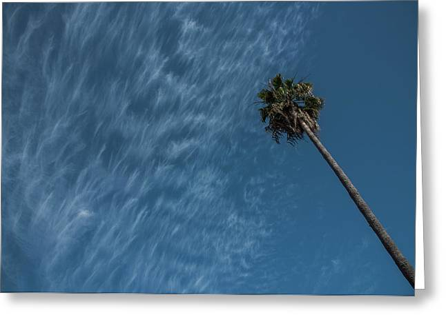 California Dreamin' Greeting Card by Richard White