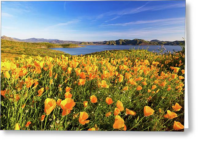 Greeting Card featuring the photograph California Dreamin by Tassanee Angiolillo