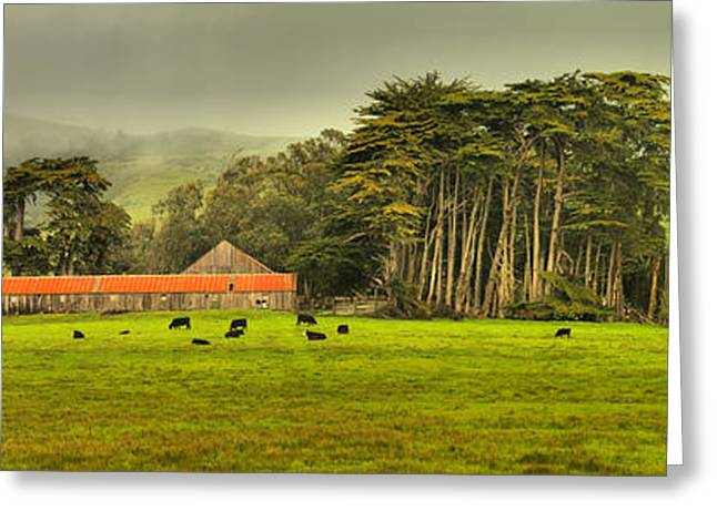California Farm Country Greeting Card by Adam Jewell