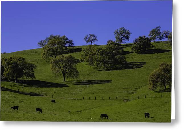 California Green Hillside Greeting Card