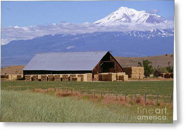 California Hay Barn Greeting Card by Methune Hively
