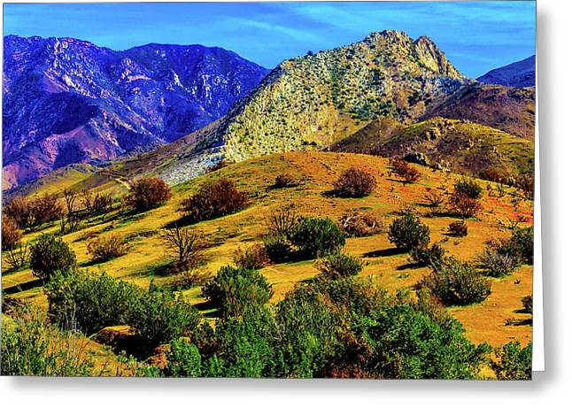 California Hills Greeting Card by Garry Gay