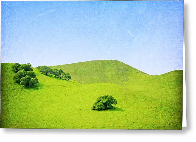 Greeting Card featuring the photograph California Hillside by Melanie Alexandra Price