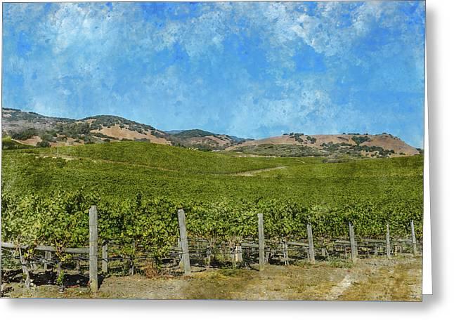 California - Napa Valley Vineyard Greeting Card