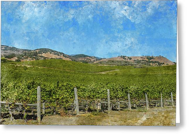 California - Napa Valley Vineyard Greeting Card by Brandon Bourdages