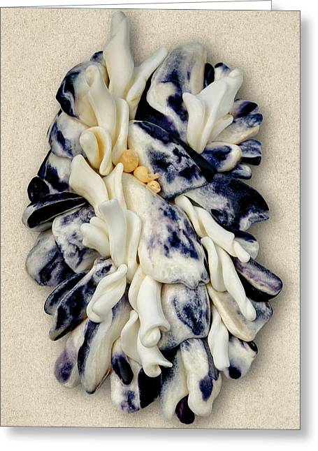 Shells Mixed Media Greeting Cards - California Opus 14 Greeting Card by Carol Zee
