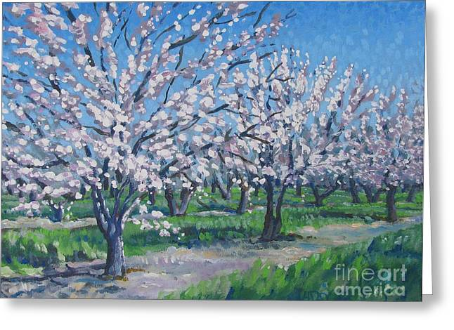 Stockton Paintings Greeting Cards - California Orchard Greeting Card by Vanessa Hadady BFA MA