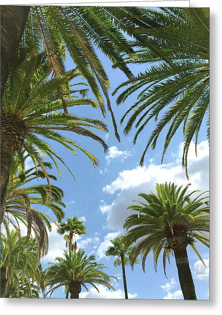 California Palm Trees Greeting Card by Art Block Collections