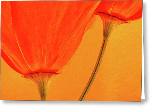 California Poppies Painterly Effect Greeting Card