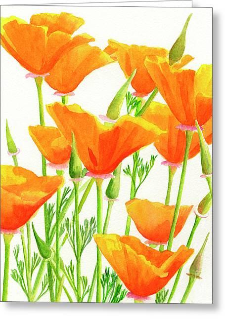 California Poppies Square Design Greeting Card