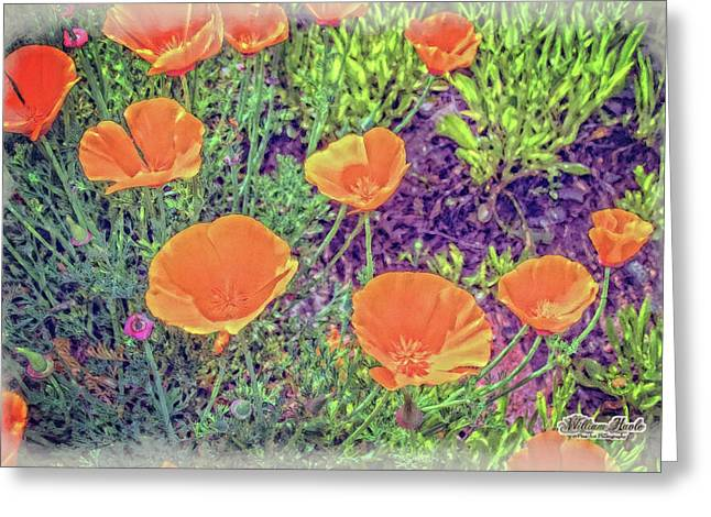 Greeting Card featuring the photograph California Poppys Too by William Havle