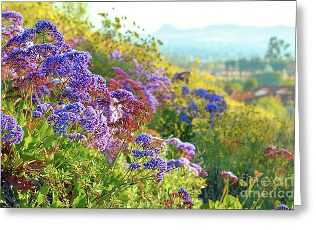 California Spring Greeting Card by Luv Photography