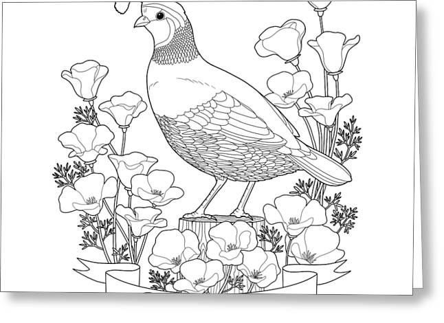 California State Bird And Flower Coloring Page Greeting Card by Crista Forest