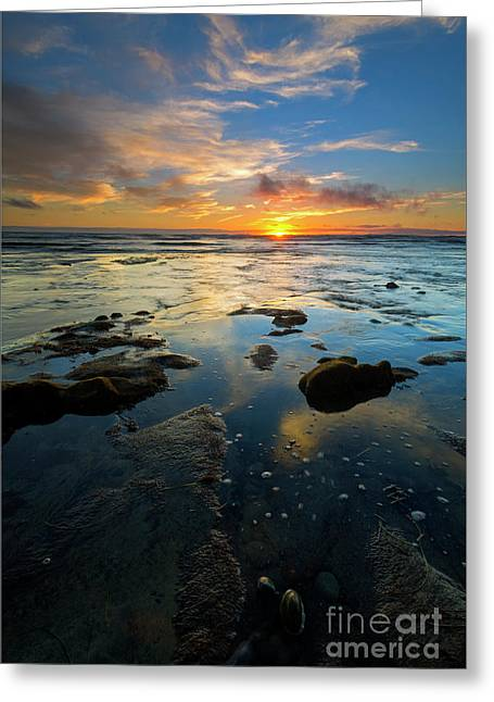 California Tidepool Sunset Greeting Card by Mike Dawson