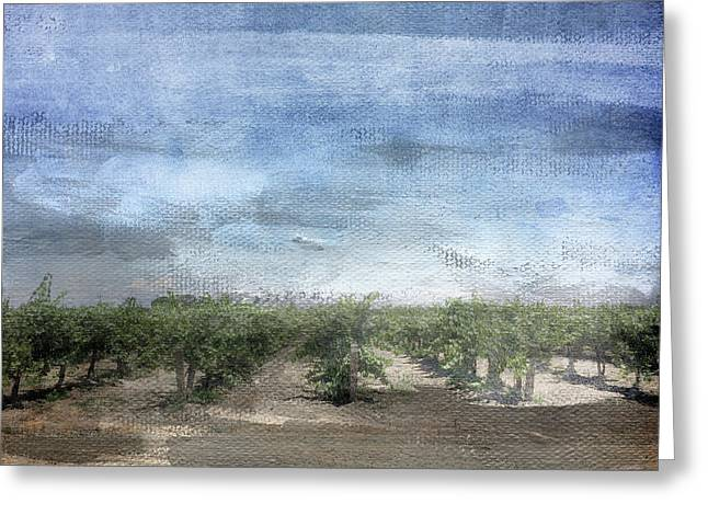 California Vineyard- Art By Linda Woods Greeting Card