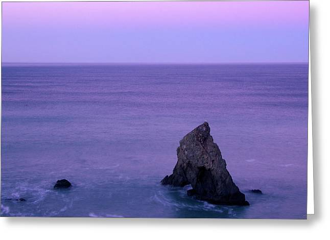 California's North Coast Greeting Card by Soli Deo Gloria Wilderness And Wildlife Photography