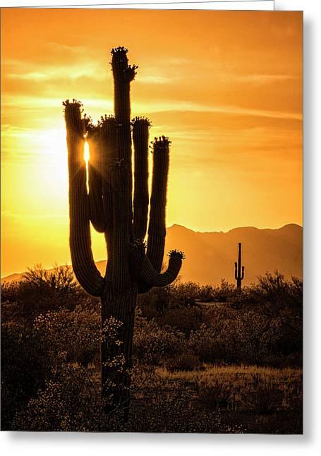 Call It Desert Gold  Greeting Card