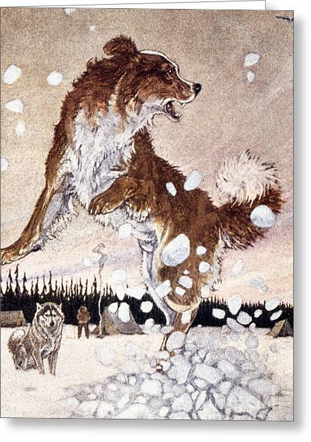 Call Of The Wild Greeting Card by Granger